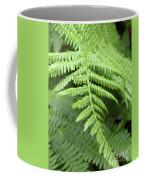 Green Fern 2 Coffee Mug