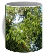 Green Fizalis Plant Coffee Mug