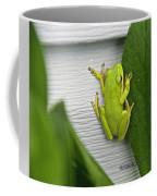 Green Frog Coffee Mug