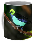 Green Headed Bird On Branch Coffee Mug