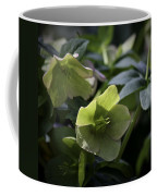 Green Hellebore Squared Coffee Mug