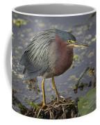 Green Heron 52 Coffee Mug