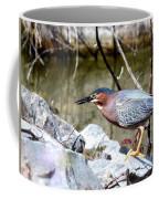 Green Heron . 7d614 Coffee Mug