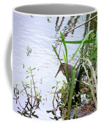 Green Heron Coffee Mug