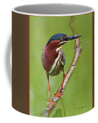 Green Heron At Gilbert Riparian Preserve Coffee Mug