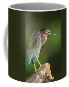 Green Heron Butorides Virescens Coffee Mug