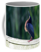 Green Heron Calling Softly In The Early Morning Coffee Mug