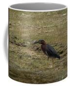 Green Heron In Central Texas Coffee Mug
