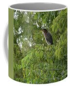 Green Heron In Tree Coffee Mug