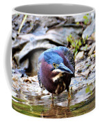 Green Heron Male Coffee Mug