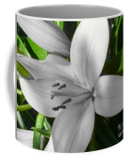 Green Highlighted Lily Coffee Mug
