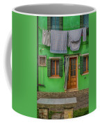 Green House And Hanging Wash_dsc5111_03042017 Coffee Mug