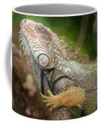 Green Iguana Costa Rica Coffee Mug