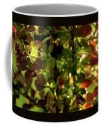 Green Leaf Red Leaf Pano Coffee Mug