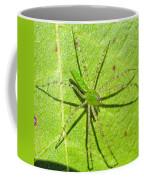 Green Lynx Spider Coffee Mug