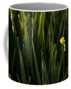 Green Marsh Grass At Sunrise On Lake Cassidy  Coffee Mug