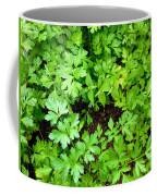 Green Parsley 2 Coffee Mug