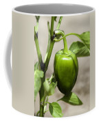 Green Pepper Coffee Mug
