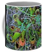 Northern Pitcher Plant Coffee Mug