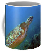 Green Sea Turtle 4 Coffee Mug