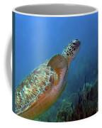 Green Sea Turtle 4 Coffee Mug
