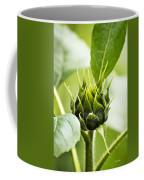 Green Sunflower Bud Coffee Mug