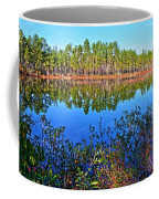 Green Swamp In December Coffee Mug