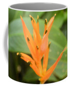 Green Tipped Coffee Mug