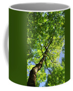 Summer Tree Canopy Coffee Mug