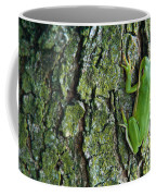 Green Tree Frog On Lichen Covered Bark Coffee Mug