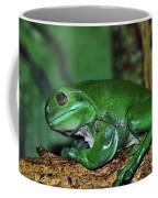 Green Tree Frog With A Smile Coffee Mug