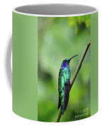 Green Violet Ear Hummingbird Coffee Mug