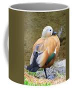 Green Winged Wood Duck 2 Coffee Mug