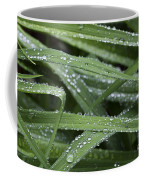 Green With Rain Drops Coffee Mug