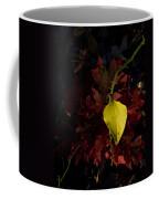 Greenbriar Leaf In Evening Sun Coffee Mug