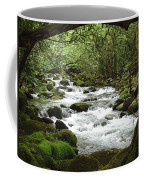 Greenbrier River Scene 2 Coffee Mug
