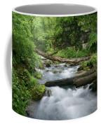 Greer Spring Branch 1 Coffee Mug