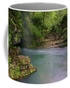 Greer Spring Coffee Mug