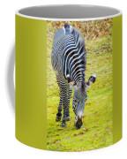 Grevys Zebra Left Coffee Mug