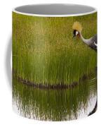 Grey Crowned Crane - Signed Coffee Mug