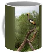Grey Crowned Crane Coffee Mug