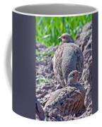Grey Partridge Coffee Mug