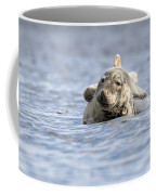 Common Seal Coffee Mug
