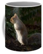 Grey Squirel Coffee Mug