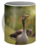 Greylag Goose Coffee Mug