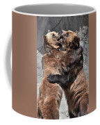 Grizzlies' Playtime 2 Coffee Mug