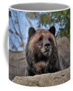 Grizzly Bear 1 Coffee Mug