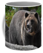 Grizzly Bear 3 Coffee Mug