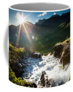 Grizzly Bear Falls Coffee Mug