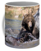 Grizzly Bear Plays In Water Coffee Mug